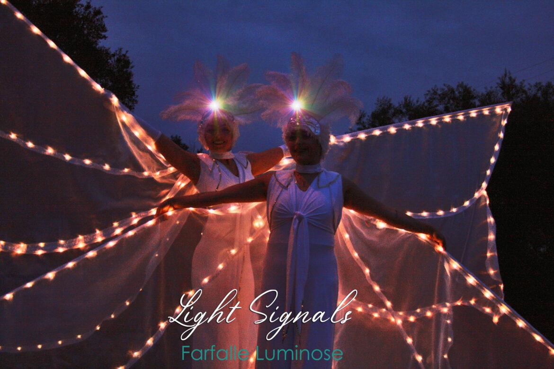 Bianche Farfalle Luminose, leggere, eteree, eleganti…
