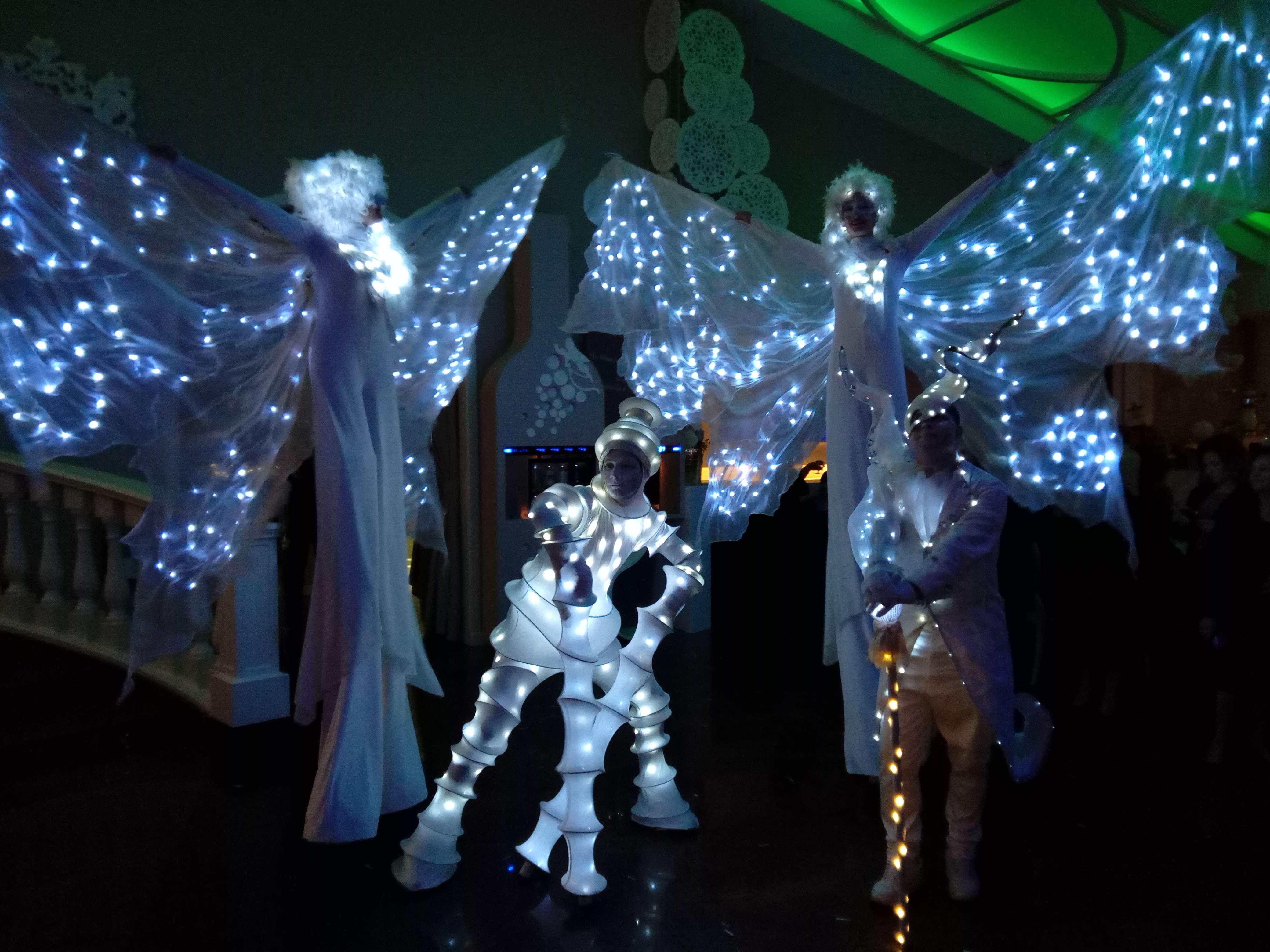 SPETTACOLI illuminati a LED